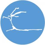 icono-servicio-construccion